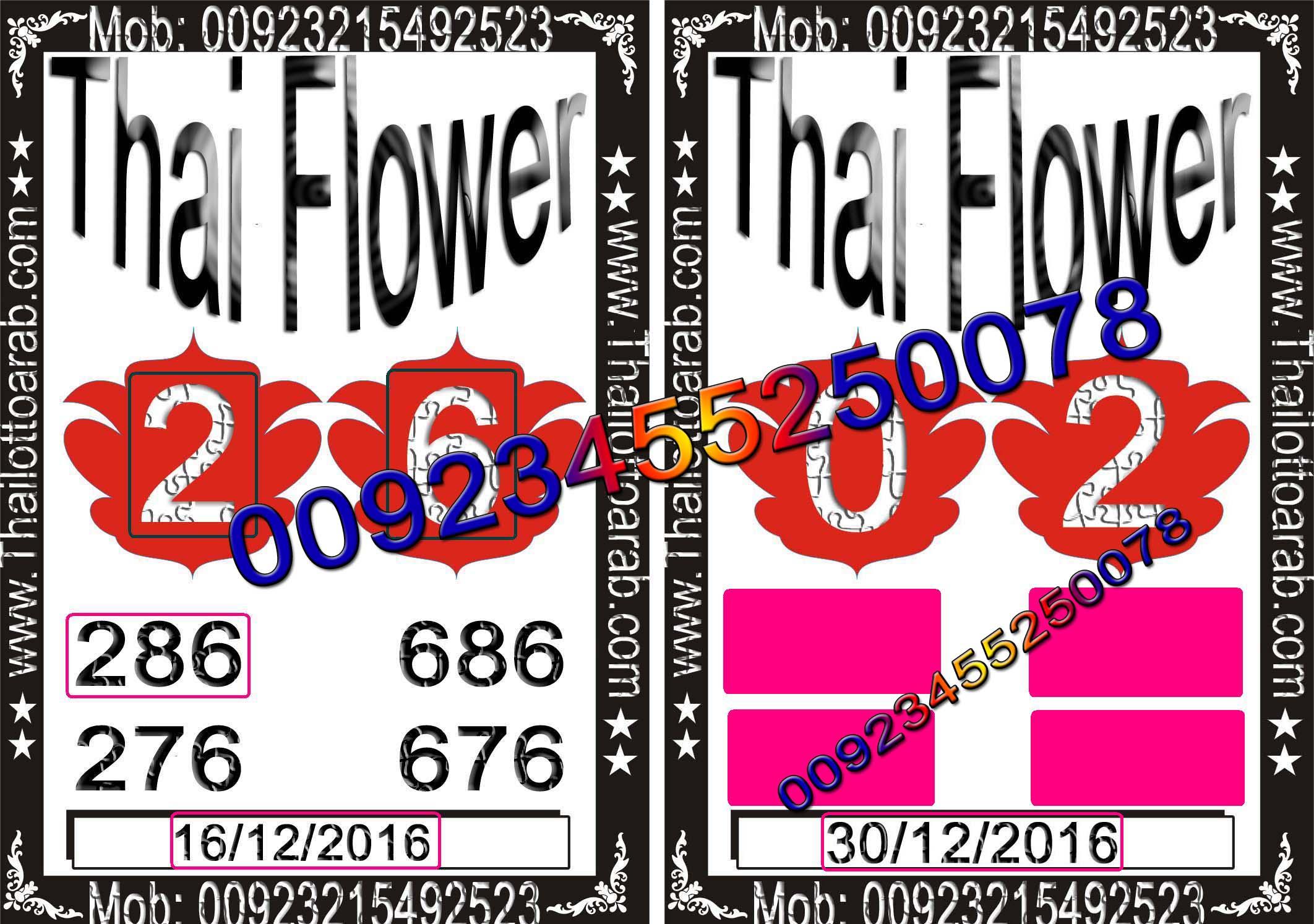 thai-lotto-game-10269-2